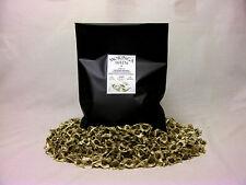 300 x Moringa Oleifera Seeds (Extra 10% Free!) Finest Organic Quality (NON GMO)