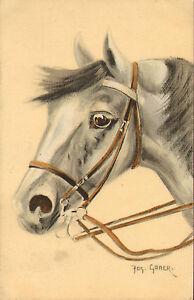 artist-signed-gaber-quality-horse-postcard-1914