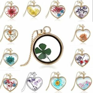 Natural Clover Dried Flower Gold Heart Glass Locket Pendant Necklace
