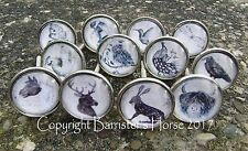 PRETTY ANIMALS & WILDLIFE, CUPBOARD DOOR DRAWER KNOBS HANDLES SILVER METAL/GLASS