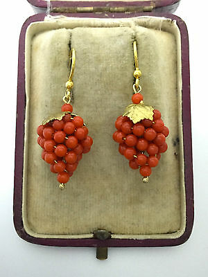 A Wonderful Pair Of Novelty Coral Bunch Of Grapes Earrings Circa 1800's
