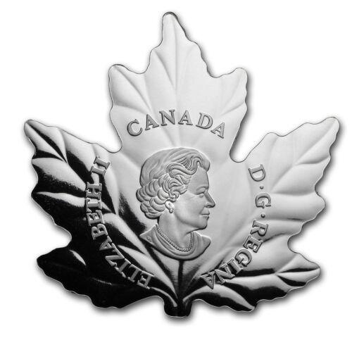 2016 Canada 1//2 oz Silver $10 Proof Maple Leaf Silhouette SKU #102820 Geese
