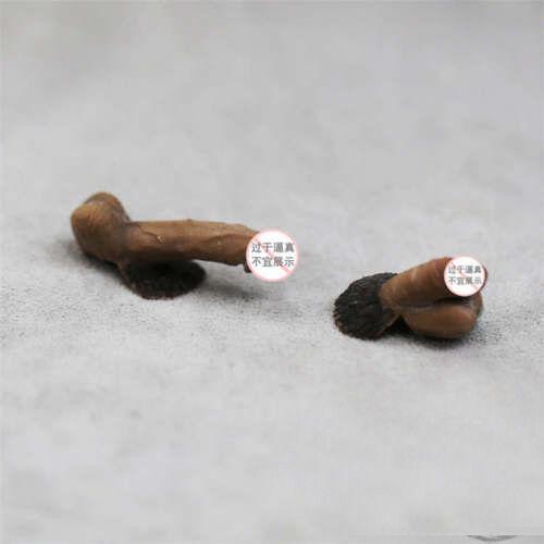 """1 Set 1//6th Set organo genitale maschile Pene JJ modello per Phicen 12/"""" parte corpo maschile"""