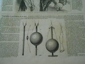 Doux Gravure 1858 - Végétation Et Profondeur De La Mer Prix De Vente Directe D'Usine