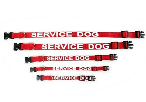 ALL-ACCESS-CANINE-Service-Dog-Emotional-Support-Animal-Dog-Collar-and-Tag-XS-L