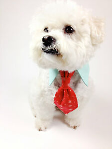 DOG AND CAT PET CLOTHES WEBSITE. #1 EBAY BUSINESS SELLER FULLY STOCKED