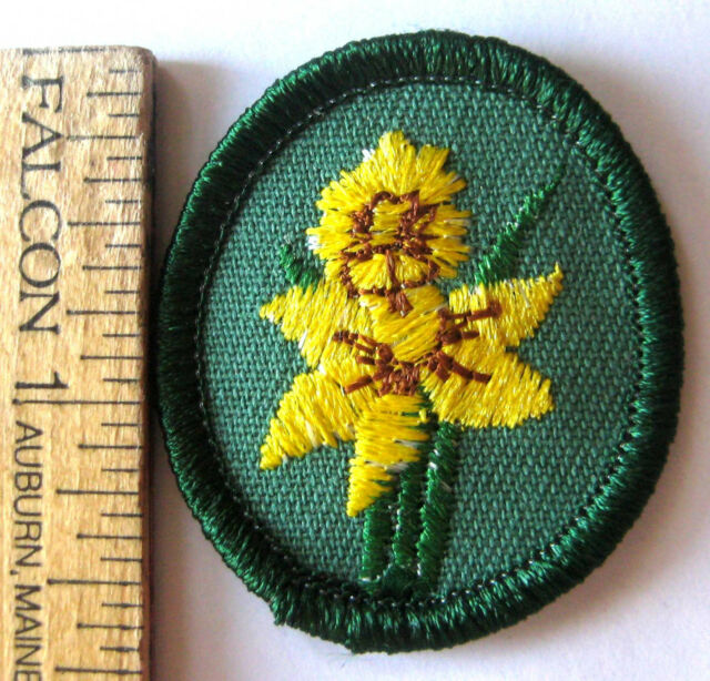 Retired Oval 1978-2011 Girl Scout STAR OF BETHLEHEM TROOP CREST Flower Patch