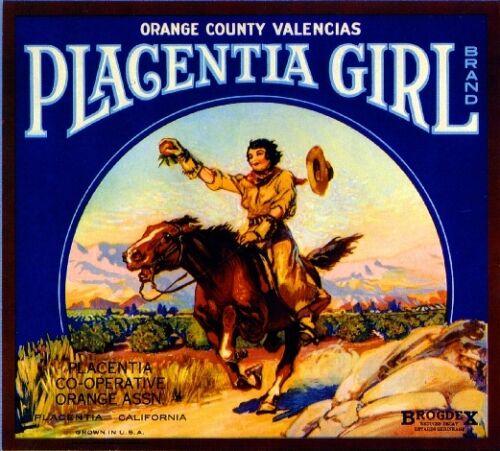 Placentia Girl Orange County Orange Citrus Fruit Crate Label Vintage Art Print