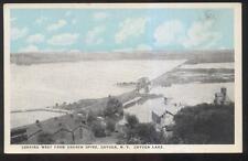 Postcard CAYUGA LAKE New York/NY  Lakeside Area Houses/Homes Aerial view 1920's
