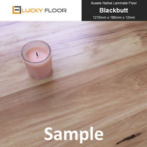 12mm-Blackbutt-Laminate-Flooring-Sample-Floating-Timber-Floor-boards-Click-Lock