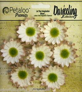 CREAM-Mix-7-Mini-DAISY-Paper-Flowers-Green-Cntr-30mm-across-Darjeeling-Petaloo