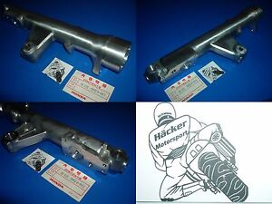 Tauchrohr-CASE-LEFT-FRONT-FROCK-CBX-650-E-Baujahr-1983-51521-MG0-003