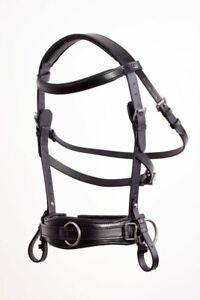 Kappzaum Royal Comfort Crownclub Pony Vollblut Warmblut Kaltblut robustes LEDER