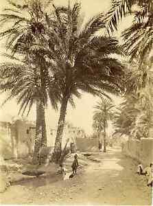 ND-Algerie-vieux-Biskra-une-rue-Vintage-albumen-print-Tirage-albumine