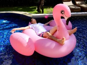 Extra Large Inflatable Float Flamingo Float Swan Swimming