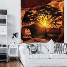 VLIES Fototapeten Fototapete Tapete Natur Afrika Sonne Baum Blick 3FX10260VEA