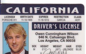 Owen-Wilson-Midnight-in-Paris-Star-ID-card-Drivers-License