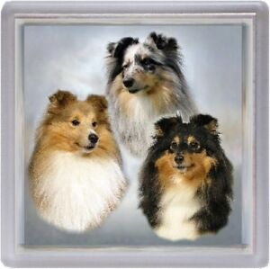 2 Shetland Sheepdog//Sheltie Car Stickers 5 By Starprint