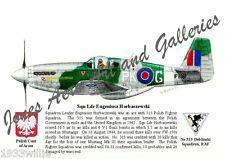 Mustang Mk III RAF Polish Air Force Giclee & Iris Prints by Willie Jones Jr.