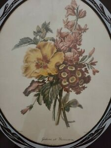 Vintage Framed French Botanical Floral Lithograph Print by P.J. Redouie