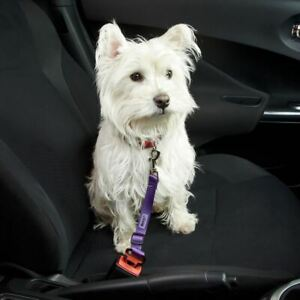 Bunty-Dog-Cat-Safty-Travel-Seat-Belt-Restraint-Harness-Clip-For-Car-Van-Lead