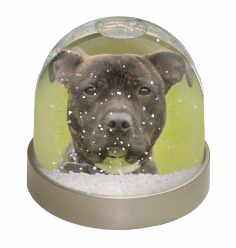 AD-SBT12GL Staffordshire Bull Terrier Photo Snow Globe Waterball Stocking Fille