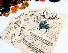 Bestiary Witcher inspired journal pages. Noonwraith, Cockatrice, Leshen, LARP
