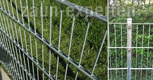 Doppelstabmattenzaun 55 Meter Verzinkt Hohe 103cm Sichtschutz