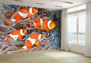 Clownfish-on-the-Coral-Wallpaper-Mural-Photo-20189311-budget-paper