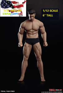 """TBLeague PHICEN 1//12 male Seamless muscular body 6/"""" figure w// Head TM02A ❶USA❶"""