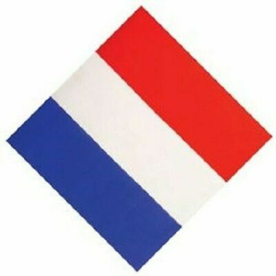 Bandana France Tricolore 55 Cm Bleu Blanc Rouge