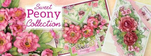 Heartfelt Creations Sweet Peony Die /& Stamp Set Small /& Large Combo 4x Sets