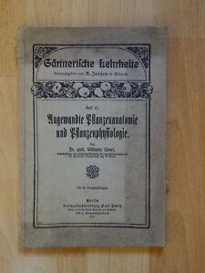 Antiquarische Bücher UnermüDlich Dr Ebert Pflanzenanatomie Pflanzenphysiologie 1925 Janson Eisenach Zur Verbesserung Der Durchblutung Alte Berufe