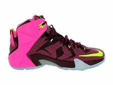 Nike Lebron XII Basketball Shoes/ Men's Size 11.5 / Merlot Silver Volt Pink