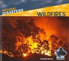 Natural Disasters 9781617830303 by Rochelle Baltzer