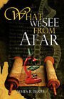 What We See from Afar by James R Berry (Paperback / softback, 2008)