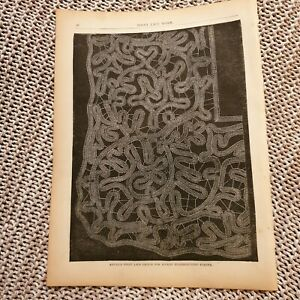 Antique-Point-Lace-Design-For-Pocket-Handkerchief-Border-1881-Book-Page