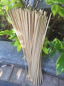 Intelligent Jardin 300pcs Bambou Fleur Bâtons 40 Cm Dia3mm Pour Plantation Soutien-afficher Le Titre D'origine