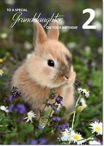 Doodlecards Grandaughter 2nd Birthday Card Medium