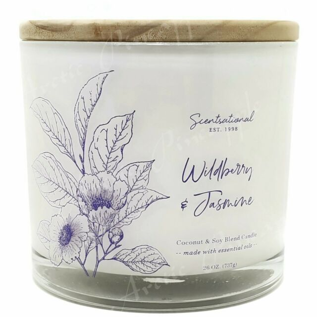 Scentsational Coconut & Soy Wax 3 Wick Large 26oz Candle