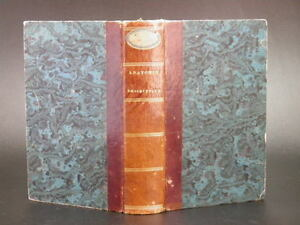 BAYLE-Manuel-d-039-Anatomie-Descriptive-Organes-Neurosyphilis-MEDECINE-Relie-1826