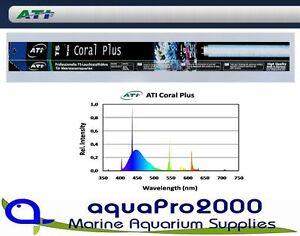 Fische & Aquarien EntrüCkung Ati Coral Plus 24 Watt T5 Leuchtstoffröhre Meerwasser Durchblutung Aktivieren Und Sehnen Und Knochen StäRken