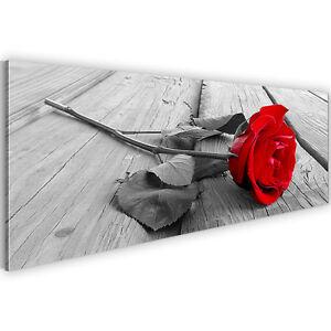 Bild leinwand bilder 204411a kunstdruck blumen rose deko for Wohnzimmer deko rot grau