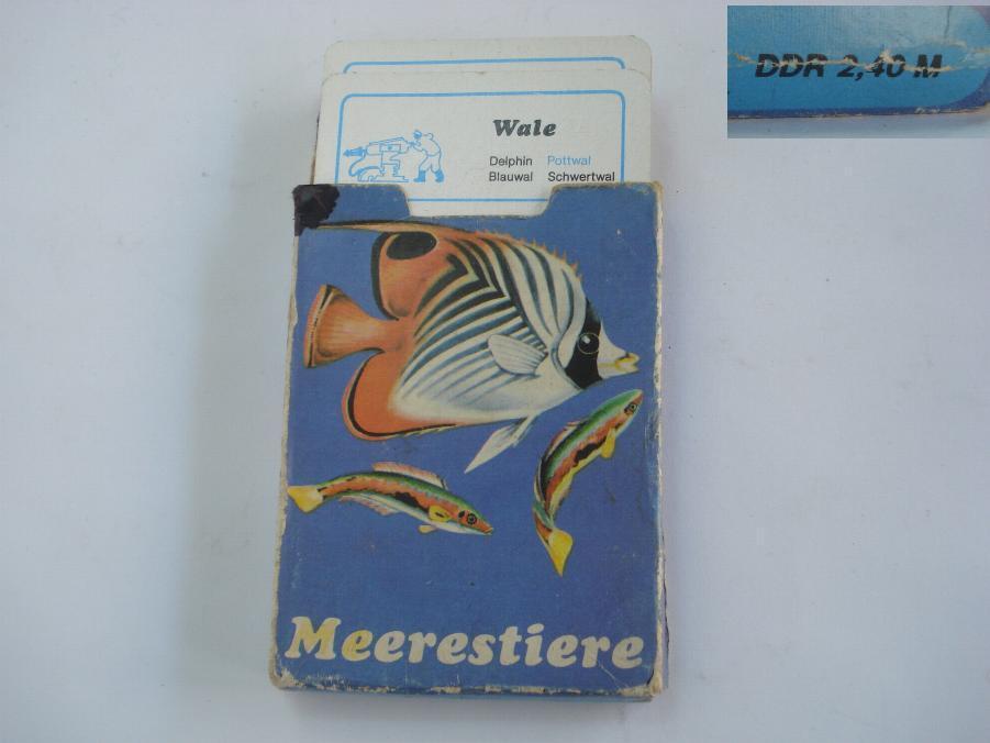 De Colección alemana jugando a las Cochetas Set con animales marinos