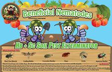 10 Million Live Beneficial Nematodes Hb & Sc - Kills Over 200 Different Species