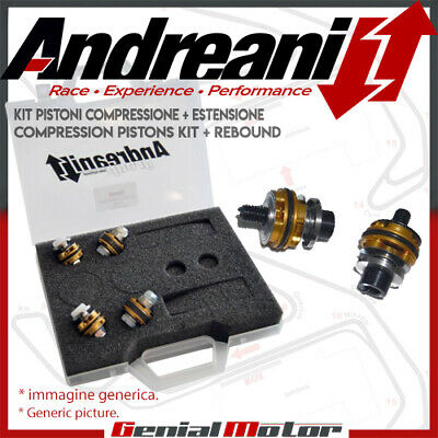 Andreani Kompression Und Rebound Gabel Kolben Kit Fur Yamaha Yzf R6 2000 00