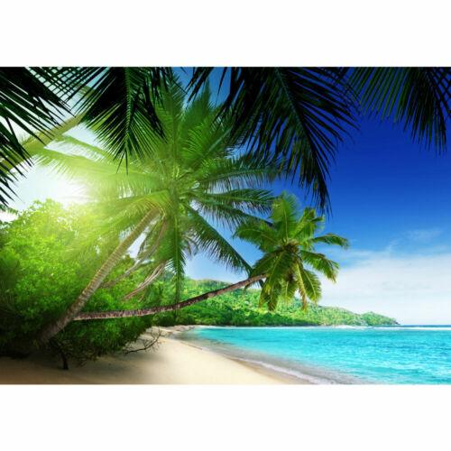 Fototapete Strand Meer Palmen Beach 3D Ozean Palme liwwing no 5