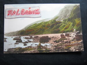 Labrador-Beach-Devon-Frith-039-s-Postcard