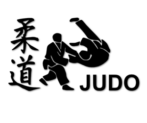 Judo Aufkleber Kampfsport Japanische Schriftzeichen Auto