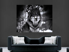 WOLF IN THE SNOW BLUE EYES  LARGE WALL ART POSTER PICTURE